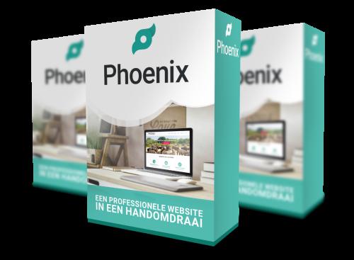 phoenix website review onze ervaring