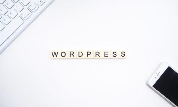 Beste WordPress-Thema's 2021 [Dit Zijn De #1 Keuzes]